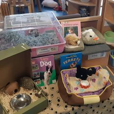 Vets and pet shop role play area Classroom Pets, Preschool Classroom, Preschool Activities, Kindergarten, Role Play Shop, Role Play Areas Eyfs, People Who Help Us, Dear Zoo, Play Corner