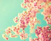 mint & coral florals