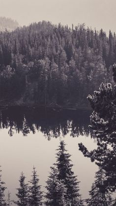 Canada lake black and white #iphone #wallpaper