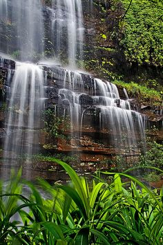 Krantzkloof Nature Reserve is situated just outside of Kloof KZN. You can expect breathtaking views of the gorge, waterfall and hectares of dense forest and vegetation.  See Where to Stay's accommodation options in Kloof Click on link for more info. http://www.wheretostay.co.za/kzn/dm/accommodation/kloof.php