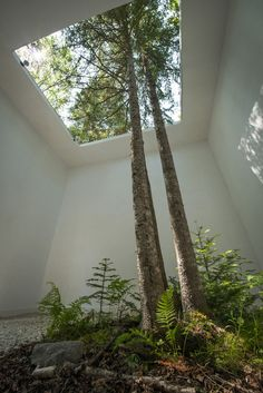 'Courtesy of Nature' garden by Johan Selbing and Anouk Vogel at the 2013 International Garden Festival