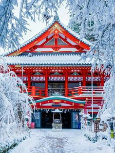 Japan has a lot of awesome tourist attractions. so snowy!!! I have to go to Japan when it is winter there. ❄️⛩