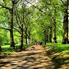 Green Park in London, Greater London