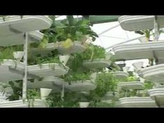 Real Change - Vertical Farming - Resource Based Economy - For Humanity Not Profit!