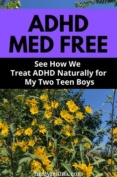Adhd Supplements, Natural Supplements, Fish Oil For Kids, Natural Treatments, Natural Remedies, Types Of Adhd, Adhd Diet, Organic Fruits And Vegetables