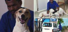 O indiano Balu juntou todas as suas economias, durante dez anos, a fim de comprar uma van e transformá-la em  ambulância para cuidar de cães machucados e abandonados.