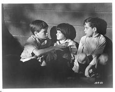 To Kill a Mockingbird (1962) | I'm Sprouticus