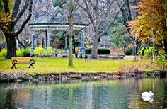 Victoria Park, Kitchener, Ontario Waterloo Ontario, Kitchener Ontario, Canada, Twin Cities, Victoria, Spaces, Weddings, Park, Full Figured
