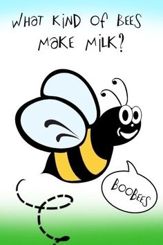 Bee joke!  Call A1 Bee Specialists in Bloomfield Hills, MI today at (248) 467-4849 to schedule an appointment if you've got a stinging insect problem around your house or place of business! You can also visit www.a1beespecialists.com!