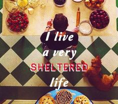 """I live a very sheltered life."" Pushing Daisies."