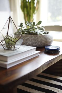 Succulents are an excellent option if you'd rather skip flowers but want some natural inspiration on the table.