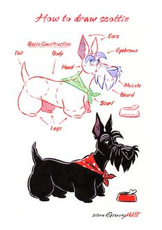 How to draw a Scottie - digital print