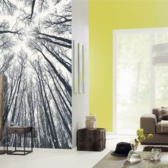Black and White Wallpaper Collection (source Caselio / Zepel) / Fabric Wallpaper Australia / The Ivory Tower