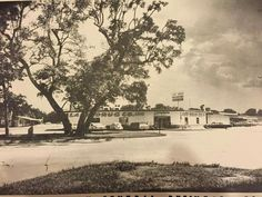 Lake Jackson Texas, Brazoria County, Galveston, Back In The Day, History, Places, Pictures, Painting, Outdoor