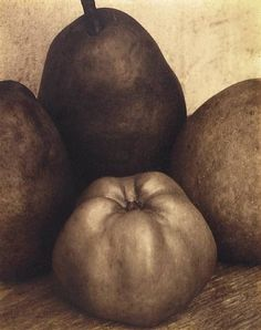 Edward Steichen (Luxembourg, active United States, Three Pears & An Apple printed 1921 Gelatin silver print History Of Photography, Still Life Photography, Light Photography, Black And White Photography, Fine Art Photography, Monochrome Photography, Edward Steichen, Alfred Stieglitz, New York Museums