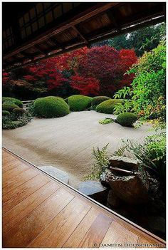 Fall in Shisen-do (詩仙堂) Other pictures of Japan, Kyoto (京都) and Shisen-do (詩仙堂). Japanese Architecture, Landscape Architecture, Landscape Design, Japan Landscape, Asian Garden, Easy Garden, Japanese Garden Design, Japanese Gardens, Japanese Garden Landscape