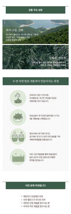 미샤 > [미샤] 타임 레볼루션 아르테미시아 트리트먼트 에센스 스페셜 세트 Detail, Shopping