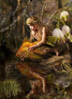 Love this! Fairy returning a goldfish to the stream. ~ ALW (Artist ??)