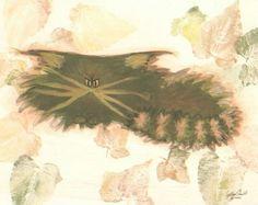 Green Cranky Cat