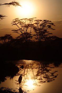 Tanzania 4 by on deviantART Beautiful Sky, Beautiful World, Beautiful Landscapes, All Nature, Amazing Nature, Kenya, Natur Wallpaper, Safari, Photo Animaliere
