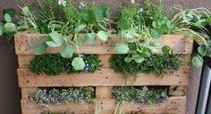Afbeeldingsresultaat voor tuin ideeen dakterras
