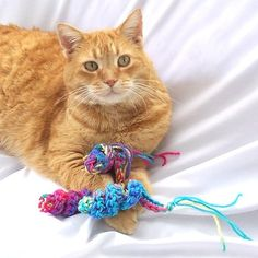 Smudge needs these...I wish I could crochet.