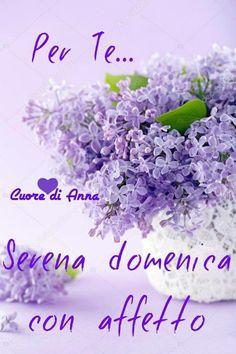 buongiorno buona domenica Happy Weekend, Happy Sunday, Italian Quotes, Good Mood, Good Morning, Genere, Mary, Hobby, Monet