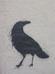 raven on the wall    Fairly handsome raven (or crow, although it looks like a raven) stencil on a building at Gold and Terrace near UNM.  By h. wren  http://flic.kr/p/3fChK