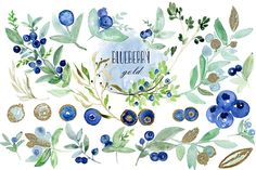 Blueberry gold watercolor clipart hand drawn. by LABFcreations