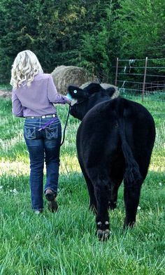 Senior pictures with cattle