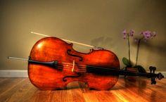 cello wallpaper - Google Search