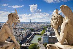 Paris gargoyles of Notre Dame having a chat since 1163 AD