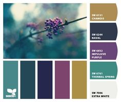 Mouse Paw paint chips (img from Design Seeds and paint colors from Sherwin Williams) http://tmp.letschipit.com/emnNZu_full.jpg