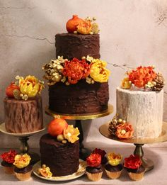 Fall Wedding Cupcakes, Autumn Wedding Cakes, Amazing Wedding Cakes, Amazing Cakes, Gorgeous Cakes, Pretty Cakes, Fondant, Fall Cakes, Different Cakes