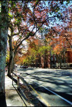 Adelaide, Australia -