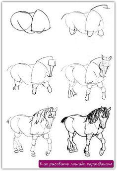 Как рисовать лошадь карандашом. Урок №12