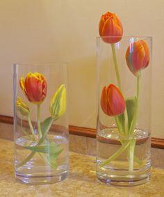 Modern tulip arrangement