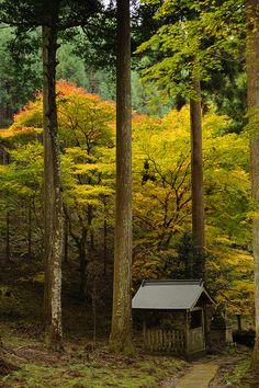 Dofu shrine, Kyoto, Japan