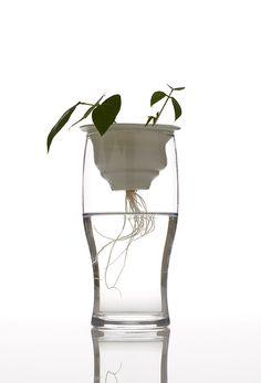 Plantation de Alicja Patanowska, 2014. Colección de macetas de cerámica artesanales que descansan sobre vasos de vidrio, ofreciéndonos de esta forma, la posibilidad de presenciar el crecimiento de la planta, tanto del tallo como de la raíz