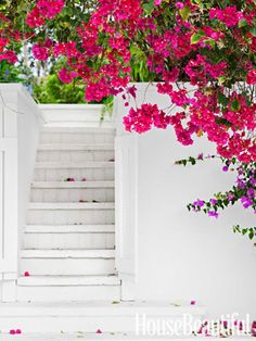 Back steps of a Bahamas house surrounded by bougainvillea. Beautiful Gardens, Beautiful Homes, House Beautiful, Bahamas House, Back Steps, Stairway To Heaven, Flower Power, Beautiful Flowers, Caribbean
