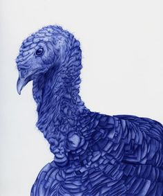 Incredible standard Bic pen drawings by French Illustrator Sarah Esteje.