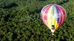 Mondial Air Ballons ® #advent #adventballoon #ballondelavent #hotairballoons #montgolfiere #december #decembre #mondialairballons #rainbowcolors #couleurarcenciel #forest #trees #oneballoonaday #unballonparjour