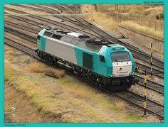 Locomotora de Transfesa 335.012. Nueva foto de trenes