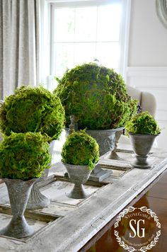 Decorative Moss Balls Interesting How To Make Moss Covered Balls  Pinterest  Craft Crafty And Gardens Inspiration