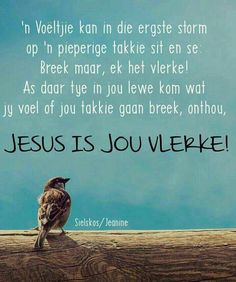 Jesus is jou Vlerke Jesus Quotes, Bible Quotes, Art Quotes, Bible Verses, Uplifting Christian Quotes, Afrikaanse Quotes, Angel Prayers, Goeie More, Morning Greetings Quotes