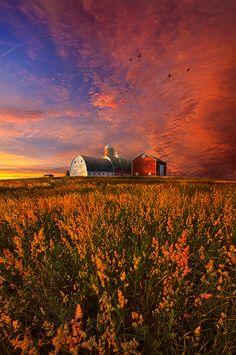 ~~Patience | peaceful barn farm landscape | by Phil Koch~~