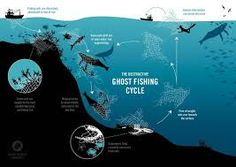 Image result for microplastics  ocean graphics