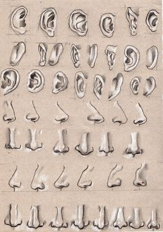 Ear and nose by on DeviantArt Cool Art Drawings, Pencil Art Drawings, Art Drawings Sketches, Cartoon Drawings, Human Body Drawing, Nose Drawing, Painting & Drawing, Anatomy Sketches, Anatomy Art
