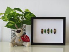 Real Jewel Beetle Collection Framed Wall Décor Box by BugsDirect