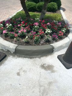 Recent job by the ABC Paving & Sealcoating Team! Concrete Curbing, Stepping Stones, Outdoor Decor, Plants, Flora, Plant, Planting
